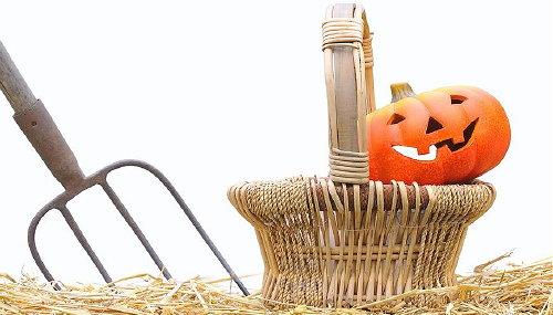 Halloween Decoratie Voor Buiten.Halloween Decoratie Special Droomhome Interieur Woonsite