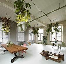 Trendy Planten & Interieur - DroomHome | Interieur & Woonsite