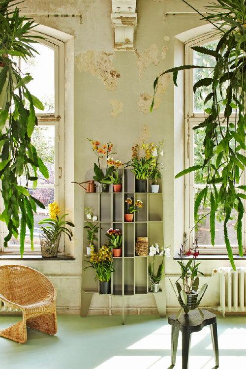 Groene Interieurtrend met Orchideeen: The Reformer - Foto: Rene van ...