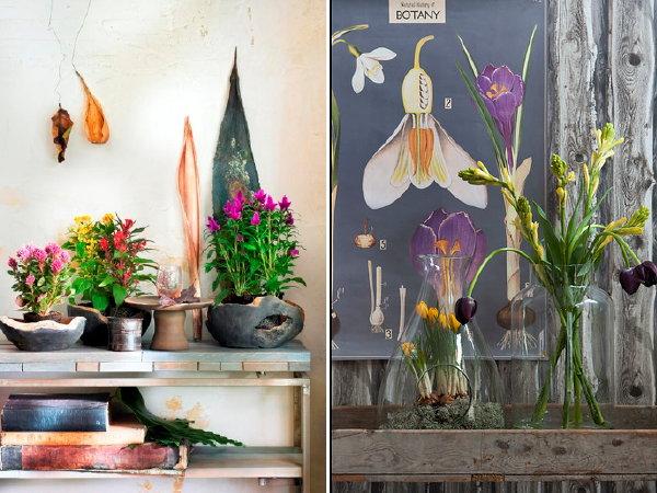Trendy planten interieur droomhome interieur woonsite